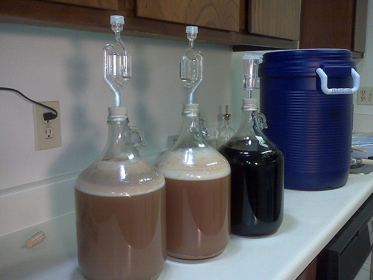 Fermenters for Home Brewing