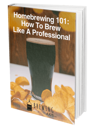 Homebrewing 101: How To Brew Like A Professional